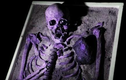 squelette II.jpg